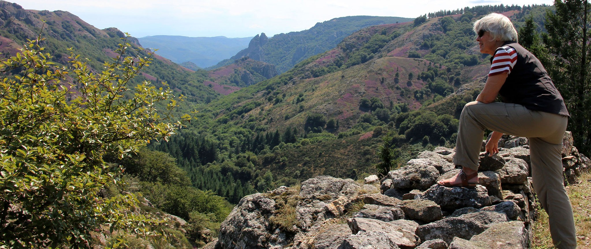 photos Haut Languedoc. Regards sur la montagne