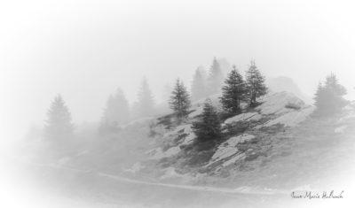Val d'Aoste 2285 m (2)