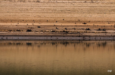 Lac du Laouzas. Basses eaux 5