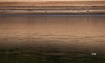Le lac du Laouzas en basses eaux 12