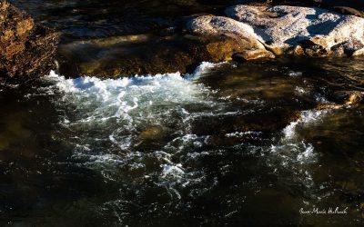 Passage de la Vèbre en amont du lac du Laouzas