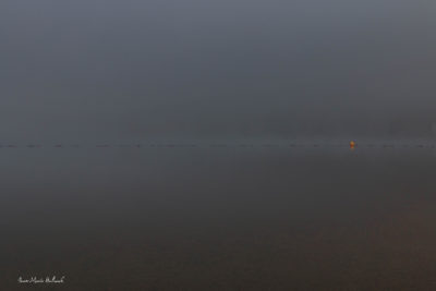 Brumes et brouillards. Lac de la Raviège, brouillard sur la baignade
