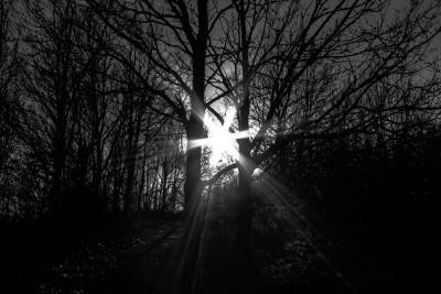 Lanterne solaire 1