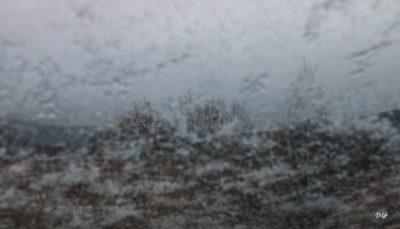Il commence à neiger...