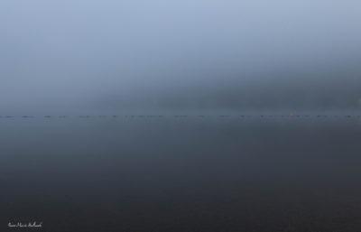 Lac de la Raviège, brouillard sur la baignade