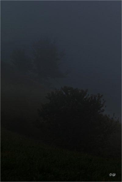 Beaufortain. Brume et coteau au-dessus des Curtillets