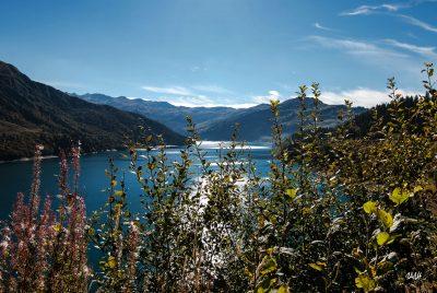Beaufortain lac de Roselend. Végétation automnale