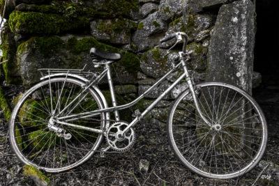 Le vélo oublié