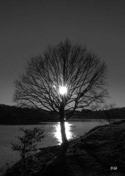 Lac du Laouzas, soir de janvier 2018 (2)