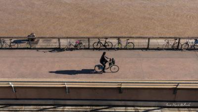 Bordeaux. Vélos rois au bord de la Garonne