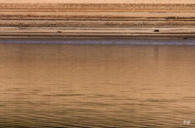 Lignes. Lac du Laouzas en Haut Languedoc, basses eaux 3