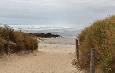 Bretagne en baie d'Audierne. Vers la plage